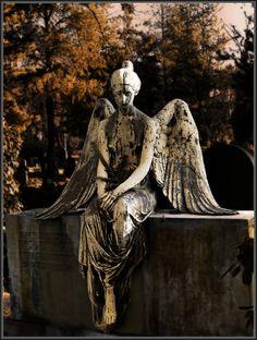 Angel II by ~R4venl0rd on deviantART