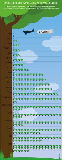Hoeveel bomen moet ik planten om mijn vliegreis te compenseren?