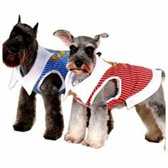 #CET Domain #Everything ElseWholesale Lots #Clothing #Apparel #Striped #Collar #Dress #Shirt #Size #Clothing #Apparel #Striped #Collar #Dress #Shirt #Size #M-Color #Blue Pet Dog Clothing & Apparel Striped Collar Dress Shirt Size M Pet Dog Clothing & Apparel Striped Collar Dress Shirt Size M-Color Blue http://www.snaproduct.com/product.aspx?PID=8124667