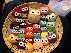 My first batch of owlets xxx