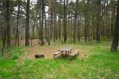 Presqu'ile Provincial Park, Camping in Ontario Parks Tent Camping, Campsite, Ontario Parks, Outdoor Furniture, Outdoor Decor, Pitch, Picture Video, Canada, Plants