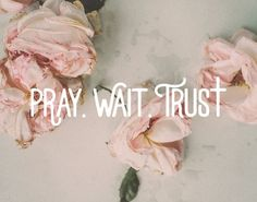 "Pray wait trust for the man God is preparing for you. The Godly man that one day will say ""Will you marry me? Spiritual Inspiration, Faith Quotes, Pray Quotes, Answered Prayer Quotes, Trust In God Quotes, Good Bible Quotes, 3 Word Quotes, Trust Gods Timing, Sad Sayings"