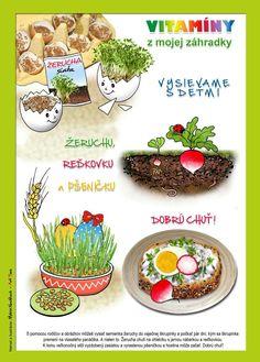 Diy And Crafts, Decorative Plates, Healthy Eating, Jar, Kids, Education, Kindergarten, Classroom, Gardening