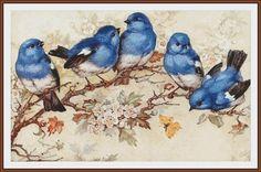 Images Vintage, Vintage Pictures, Vintage Postcards, Vintage Art, Bird Pictures, Clipart Vintage, Bird Clipart, Printable Vintage, Vintage Style