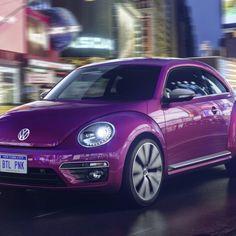 2016 Volkswagen Beetle color interior