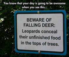 I would so throw up and scream if I was hit with a falling deer carcass that fell from a tree!
