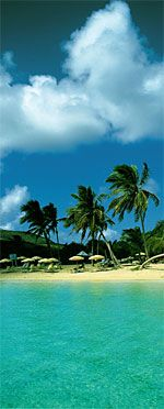 St. Martin - Caribbean where I want to be right now