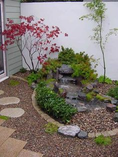 Japanese Stream in Courtyard - Tree of Life - The Japanese Garden Centre - Kleiner Garten Japanese Garden Backyard, Japanese Water Gardens, Japanese Garden Landscape, Small Japanese Garden, Japanese Garden Design, Asian Garden, Backyard Water Feature, Ponds Backyard, Backyard Landscaping