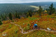 Exploring the riding opportunities north of the Arctic Circle in the land of reindeer and the midnight sun. Arctic Circle, Midnight Sun, User Experience, Mountain Biking, Trail, Bike, Explore, Mountains, Landscape