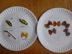 Life Cycle of a Butterfly Using Pasta children's art project and verbal discussion from http://www.somewhatsimple.com/monarch-butterflies/ (altered slightly to be age appropriate for 3 year old)