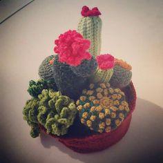 Cactus #AlanaCreaciones #macetas