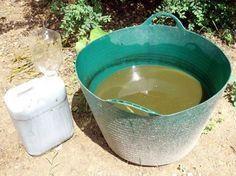 Les herbes indésirables envahissent votre jardin, votre potager ou vos dallages. Inutile d'utiliser des désherbants chimiques onéreux et dangereux pour l'environnement....