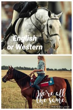 We both work just as hard! English or Western, we work together and one category isn't better than the other! Funny Horse Memes, Horse Humor, Funny Horses, Funny Memes, Western Horse Quotes, Equestrian Memes, Inspirational Horse Quotes, Httyd, Horseback Riding