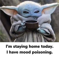 Funny Animal Memes, Funny Relatable Memes, Funny Jokes, Hilarious, Funny Sayings, Yoda Images, Yoda Meme, Star Wars Humor, Just For Laughs
