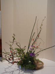 Category: Ohara - Ikebana of Richmond