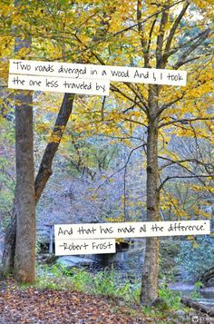 """""""Two roads diverged in a wood. And I, I took the one less traveled by. And that has made all the difference.""""   -Robert Frost"""