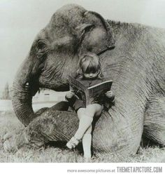 I want my own reading elephant!