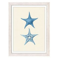 LAMINA BLUE STARFISHES 21x29.7 | Mimub.com