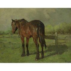 Horse Canvas Art - (24 x 18)