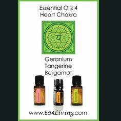 Essential Oils for a happy and healthy Heart Chakra! #geranium #tangerine #bergamot #essentialoils  www.eo4living.com