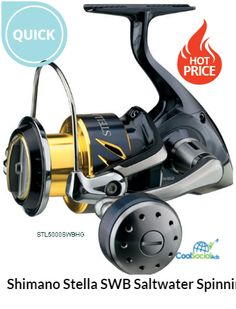 e33634224be Beastmaster 9000 Electric Conventional Reel | Fishing | Electric fishing  reels, Fish, Fishing shoes