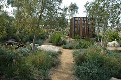 Amazing Australian Native Garden design ides Make the most of our rich native flora and fauna with these Australian native garden design ideas brought to you by Australian Outdoor Living. Australian Garden Design, Australian Native Garden, Australian Plants, Australian Bush, Australian Shepherd, Bush Garden, Dry Garden, Garden Show, Side Garden