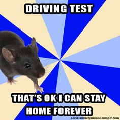 Social Anxiety Mouse...this would be why I failed my driver's test 6 times