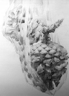 a pinecone 3 by indiart3612.deviantart.com on @deviantART