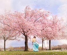 Wie sehnsüchtig warte ich jedes Jahr wieder darauf, die schönsten Spots für Kirschblüten in Wien zu finden! Dieses Jahr war es nicht anders und da viele von euch genauso die zauberhaften Magnolien, Kirschblüten und Blütenbäume in Wien suchen, habe ich in diesem Guide alles zusammengefasst, was ihr darüber wissen müsst. Am Ende findet ihr auch… Der Beitrag Kirschblüten und Magnolien in Wien   Vienna Spring Locations + Karte erschien zuerst auf Pipifein. Vienna, Spring, Urban Park, Magnolias, Cherries, Tree Structure, Lawn And Garden, Nice Asses