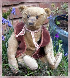 Steiff bear dating c1910 with FF button in ear.