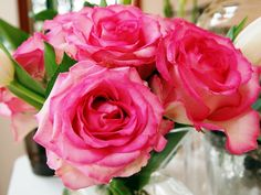 Lovely Lipstick Colored #Roses Brighten my day!