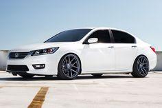 2014 honda accord custom - Google Search 2014 Honda Accord Sport, Honda Accord Custom, Honda Accord Coupe, Honda Civic Rims, Honda Cars, Acura Tsx, Honda Motors, Rims For Cars, Car Goals
