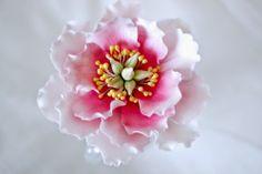 Marian pieni leipomo: Pioni sokerimassasta Wedding Planning, Baking, Floral, Flowers, Patisserie, Wedding Ceremony Outline, Bakken, Florals, Florals