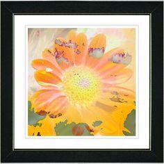 Studio Works Modern 'Daisy Bloom' by Zhee Singer Framed Painting Print in Orange/Yellow