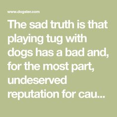 The sad truth is that playing tug with dogs has a bad and, for the most part, undeserved reputation for causing aggressive responses in our...