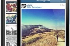 instagram Small Business Trends, Small Business Marketing, Business Tips, Instagram