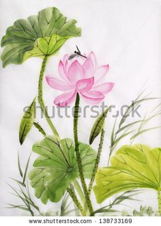 Original art, watercolor painting of lotus and dragonfly, Asian style painting by Veronika Surovtseva, via ShutterStock