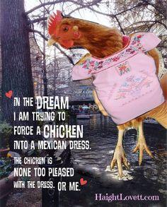 Chick in a Mexican Dress | HaightLovett.com