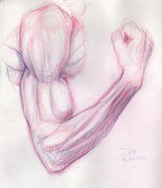 gif drawing Illustration arms tutorials human anatomy art ...