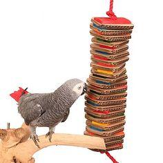 Stacks of Shredding – Large – Wood & Cardboard Parrot Toy – Anima Care Parrot Flying, Parrot Fish, Parrot Pet, Parrot Cartoon, Cockatoo Toys, Parakeet Toys, Galah Cockatoo, Diy Parrot Toys, Diy Bird Toys