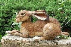 needle felted hare by Sara Renzulli