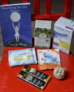 Twig and Toadstool: First Moon Kit This is so sweet. Something to keep in mind for my girls someday.