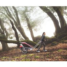 Thule Chariot - for the active family! Baby Hiking, Child Bike Seat, Cross Country Skiing, Three Kids, Baby Gear, Outdoor Activities, 2 In, Car Seats, Baby Kids