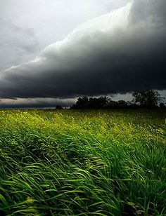 A Wind Blows by Phil~Koch on Flickr