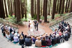 Superieur Melissa And Robert Had Beautiful Wedding In The Gardenu0027s Redwood Grove. I  Like The Simplicity