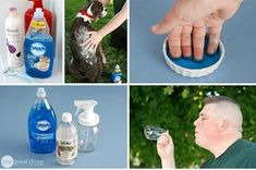 Every home should have a bottle dish soap sitting by the sink. We all know that it is good for cleaning all of the dishes in the home – that is why you bought it in the first place. However, dish soap can also be used for a number of household purposes.