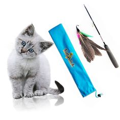 Easyology Pets Feather KittyStick Cat Toy ** Continue to the product at the image link. (This is an affiliate link and I receive a commission for the sales)