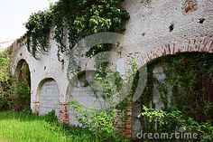 Medieval destroyed walls and plants, in ruins, in north Italy, Europe.