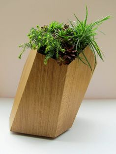 Faceted wood planter