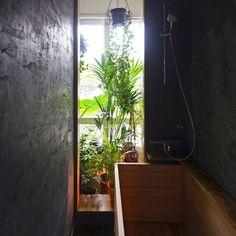 Graal architecture - Jungle urbaine / Paris 10